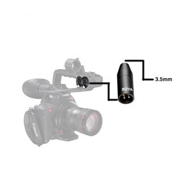 BOYA BY-35CXLR adapteris (3.5mm TRS į XLR) 3