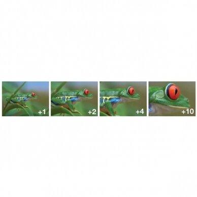 Close Up (+1,+2,+4,+10) filtrai 4