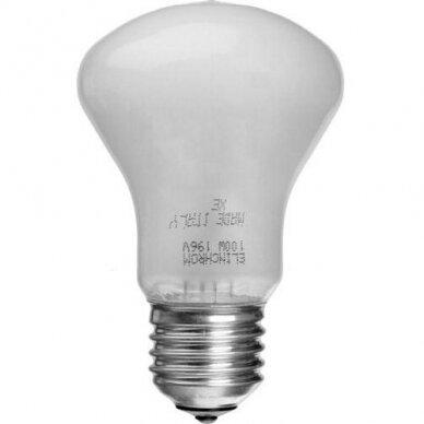 Elinchrom Modeling Lamp 100W, 196V (23002)