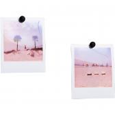 Magnetai nuotraukoms