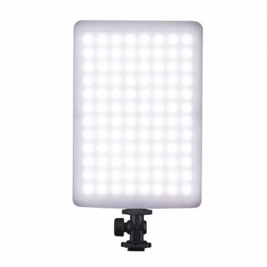 Nanlite Compac 20 3-light kit 3