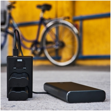 Newell LCD USB-C 2 kanalų kroviklis DMW-BLF19/E baterijai 3