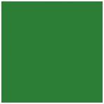 Popierinis fonas Colorama 2,72x11m Chromagreen