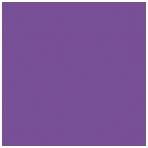 Popierinis fonas Colorama 2.72x11m Royal Purple