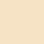 Popierinis fonas Lastolite 2.72x11m Ivory