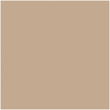 Popierinis fonas Colorama 2.72x11m Cappuccino