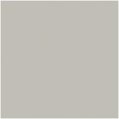 Popierinis fonas Colorama 2,72x11m Platinum