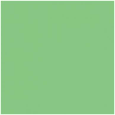 Popierinis fonas Colorama 2,72x11m Summer green